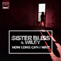 How Long Can I Wait (feat. Wiley) - EP Mp3 Download