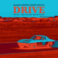 Black Coffee & David Guetta - Drive (feat. Delilah Montagu) [Radio Edit]