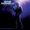 Gino Vannelli - Brother To Brother (Live) kunstwerk