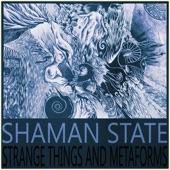Shaman State - Metaform 1