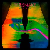 Tensnake - Things Left To Say