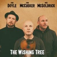 The Wishing Tree by John Doyle, John McCusker & Mike McGoldrick on Apple Music