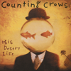 Counting Crows - Colorblind artwork
