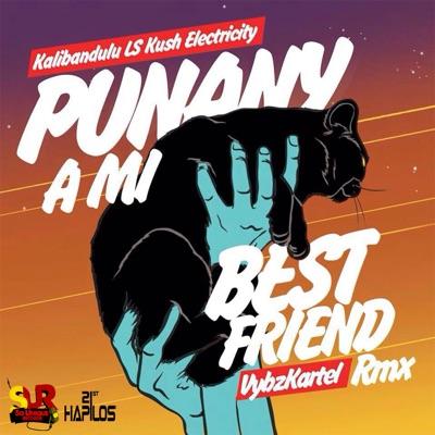 Punany a Mi Best Friend (Kalibandulu X Kush Electricity Remix) - Single - Vybz Kartel