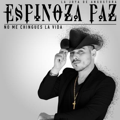 No Me Chingues La Vida - Single - Espinoza Paz