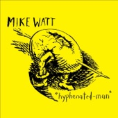 Mike Watt - stuffed-in-the-drum-man