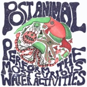 Post Animal - Goggles