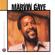 I Heard It Through the Grapevine (Single Version) - Marvin Gaye