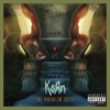 The Paradigm Shift (Deluxe Edition), Korn