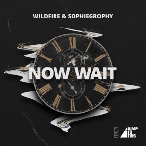 Wildfire & Sophiegrophy - Now Wait