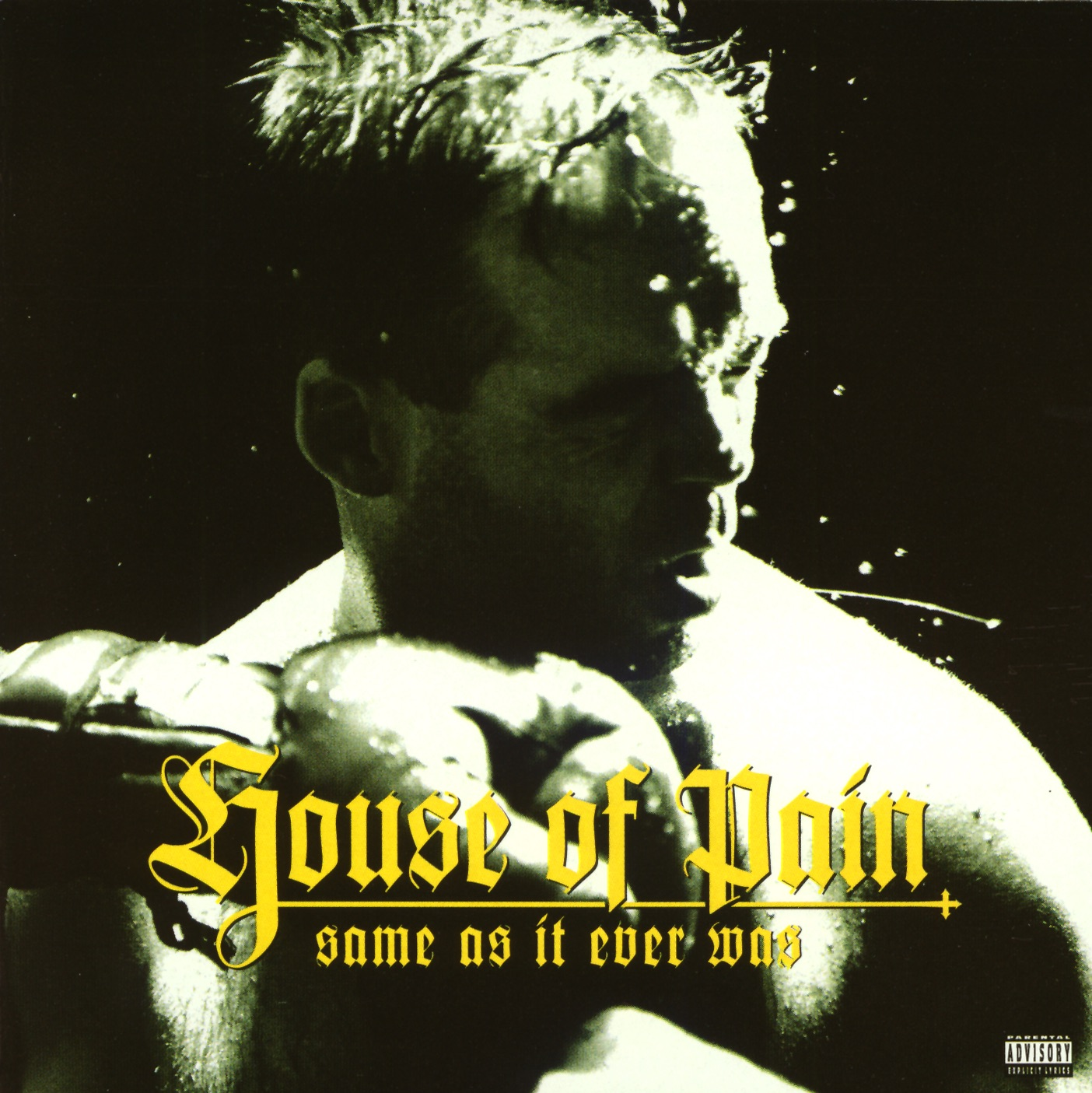 I'm a Swing It by House Of Pain