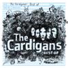 Tom Jones - Burning Down the House (feat. The Cardigans) bild