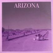 2000 Foot Turtle - Arizona