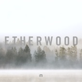 Etherwood - A Hundred Oceans