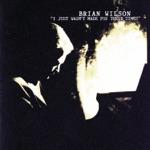 Brian Wilson - This Whole World