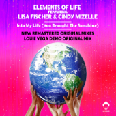 Into My Life (You Brought the Sunshine) [Louie Vega Roots Mix] [feat. Lisa Fischer & Cindy Mizelle]