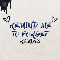 Remind Me to Forget (Remixes) - EP Mp3 Download