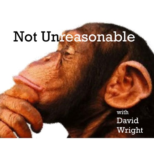 Cover image of The Not Unreasonable Podcast