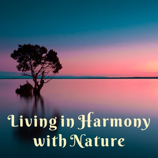 living in harmony Directed by david tomblin with patrick mcgoohan, alexis kanner, david bauer, valerie french number 6 finds himself in the middle of a wild west version of his imprisonment.