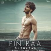 Pinjraa - Gurnazar