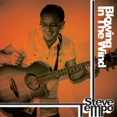 Blowing in the Wind - Steve Tempo