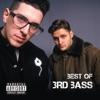 3rd Bass - The Gas Face