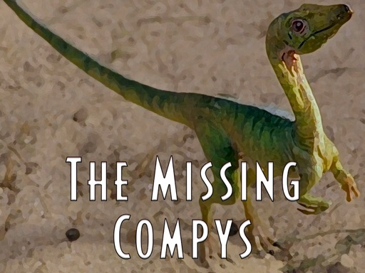 Cover image of The Missing Compys Podcast