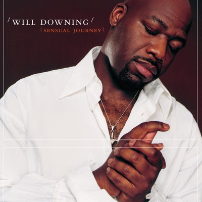 Sensual Journey - Will Downing