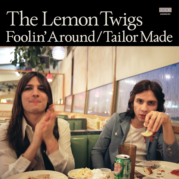 these words as long as we re together single by the lemon twigs on apple music