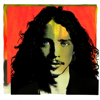 Chris Cornell, Soundgarden & Temple of the Dog - Chris Cornell (Deluxe Edition)  artwork