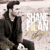 Shane Filan - This I Promise You artwork