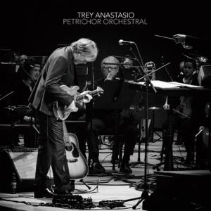 Trey Anastasio, David Sabee & SeattleMusic - Petrichor Orchestral