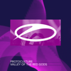 Protoculture - Valley of the Red Gods (Extended Mix) artwork