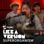 Superorganism - Congratulations