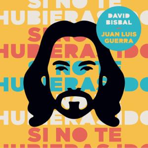 David Bisbal & Juan Luis Guerra - Si No Te Hubieras Ido