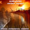 Kar4sing - Shaky Shaky (Extended Instrumental Mix) artwork
