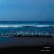 You Used to Know Me - EP - Kerry Leva - Kerry Leva