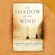 Carlos Ruiz Zafón - The Shadow of the Wind (Abridged)