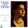 María del Monte - Amigo Si Lo Ves artwork