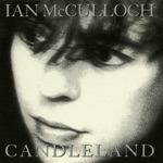 Ian McCulloch - The Cape