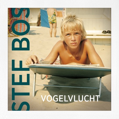 Vogelvlucht - Single - Stef Bos