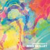 John Medeski's Mad Skillet - Mad Skillet  artwork