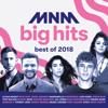 Various Artists - MNM Big Hits - Best Of 2018 artwork