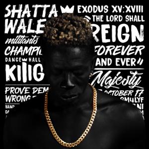 Shatta Wale - Reign