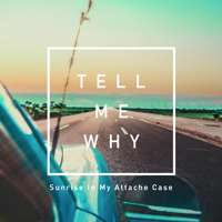 Sunrise In My Attache Case - Tell Me Why artwork