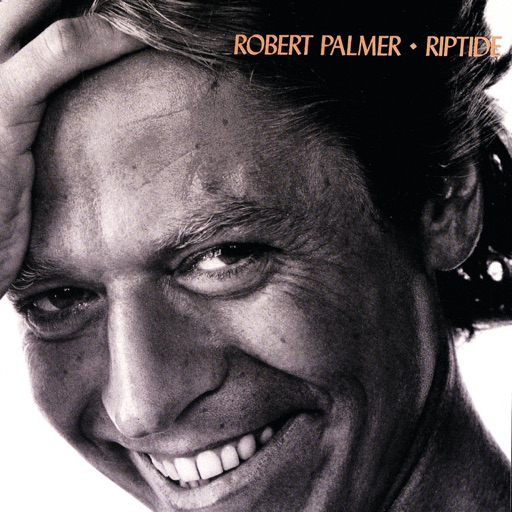 Art for I Didn't Mean To Turn You On by Robert Palmer