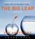 Gay Hendricks - The Big Leap