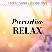 Relax Nature Sounds