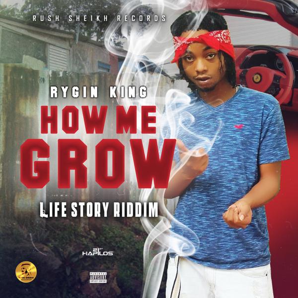 How Me Grow - Single by Rygin King