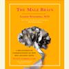 Louann Brizendine, M.D. - The Male Brain: A Breakthrough Understanding of How Men and Boys Think (Unabridged) artwork